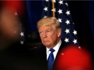 Normal Trump big