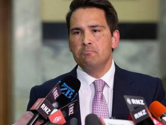 simon-bridges-image