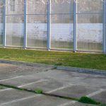 Gordon Campbell on the welcome restoration of prisoners' right to vote