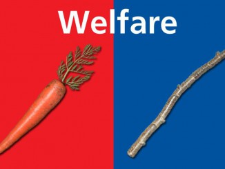 welfare_carrot_stick